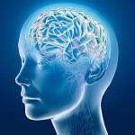 Мифы о генетическом предопределении и IQ