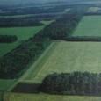 Засухи и их влияние на урожаи зерновых в СССР-России  Важной характеристикой сельского хозяйства на территории СССР является крайняя неустойчивость урожаев по годам, которая редко встречается в других странах, специализирующихся в производстве зерна. Колин Вайт ссылается на статистику, показывающую, что коэффициент вариации урожайности пшеницы в СССР почти вдвое выше, чем в США. Так, в степных ландшафтах Украины этот коэффициент достигает значения 24%, а в центральных районах США он не превышает 10%. Автор считает, что если сравнивать только центральные области двух стран, то различия в устойчивости урожаев пшеницы будет, несомненно, больше, поскольку пшеница более чувствительна к недостатку тепла, чем влаги. Это является одной из причин предпочтения выращивания ржи в лесной зоне.
