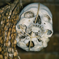 «Охота за головами являлась особым социоритуальным комплексом, требовавшим непременного осуществления вооруженных нападений. Она имела достаточно широкое распространение в прошлом. Если отвлечься от далеко небесспорных интерпретаций человеческих черепов с пробоинами эпохи палеолита, то гораздо меньше оснований имеется для сомнений в том, что охота за головами могла возникнуть в мезолите. Во всяком случае находки подобного рода имеются во Франции и Германии. Еще с большей уверенностью можно судить об охоте за головами у неолитических обитателей Дании эпохи эртебелли, у создателей культуры колоколовидных кубков в Центральной Германии и, особенно, у кельтов в раннем железном веке. Аналогичная практика была известна и в древней Мезоамерике, а на побережье Перу она, безусловно, существовала с позднего докерамического периода (La Barre, 1984. Р. 13-19; Proulx, 1971).