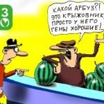 ГМО как фетиш «опасности» и мишень «опасений»