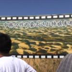 Китай строит «зеленую стену»