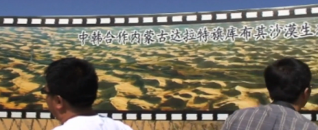 Проблемы с экологией в Китае давно не секрет для тех, кто интересуется положением дел у нашего соседа. Но мало кто знает, что, начиная с 1998 года, Китай запустил крупнейшую в мире программу по восстановлению лесов: «Великая Зеленая Стена». Начало старта было выбрано не случайно: именно в этот год наводнение на Янцзы унесло жизни более 4 тысяч человек и более 15 миллионов оставило без крова. Буйство стихии и принесенные ею бедствия произвели настолько сильное впечатление на власти, что действовать они начали чрезвычайно быстро.