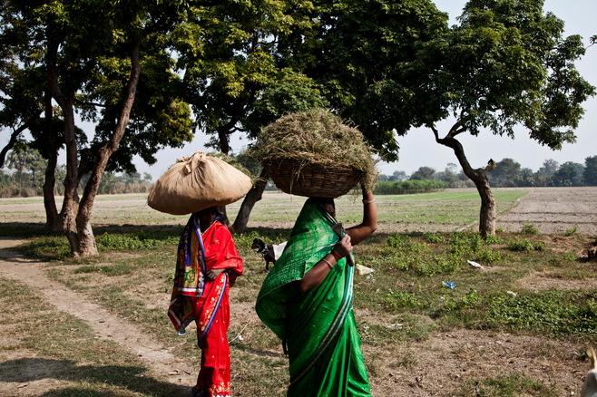 Только 7% сельских женщин (в сельской местности в Индии живёт 70% населения страны) полностью грамотны : могут и читать, и писать и считать
