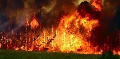 Аномально ранняя весна 2014 года чревата масштабными пожарами. В этом сошлись как природоохранные организации, тот же Greenpeace, так и чиновники Минприроды (Рослесхоз), МЧС и др...