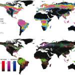 Новые данные о потере лесов на планете