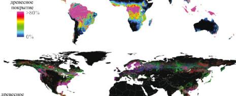 Анализ глобальных данных спутниковых съемок за 12 лет позволил обрисовать динамику изменения площади лесных массивов в мире. В итоговой сумме деградации и прироста первая ...
