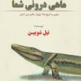 В последнее время наблюдается рост креационизма и проблем с преподаванием теории эволюции в исламских странах[1]. Настолько быстрый, что об этом писали в Science, это стало майнстримной...