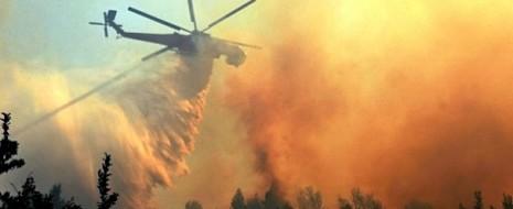 В России ожидается «огненное» лето: площадь природных пожаров сегодня в 100 раз больше, чем в аналогичный период 2013 года. Эксперты прогнозируют повторение 2010-го, когда сгорело несколько...