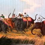 Миф о белом охотнике