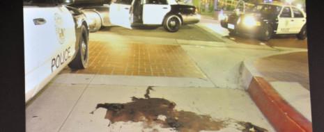 Оправдание двух полицейских из Фуллертона (Калифорния), забивших до смерти Келли Томаса – бездомного мужчину, который умолял их оставить его в живых – это доказательство того, что теперь у копов есть лицензия на убийства.
