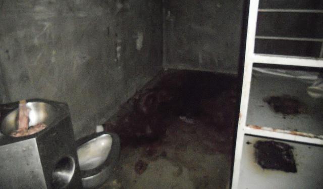 Пропитанный кровью пол камеры. ACLU говорит, что «многие психически больные заключённые не лечатся, что приводит к таким экстремальным поступкам как бросание экскрементами, глотание осколков стекла и порезы частей тела острыми предметами».