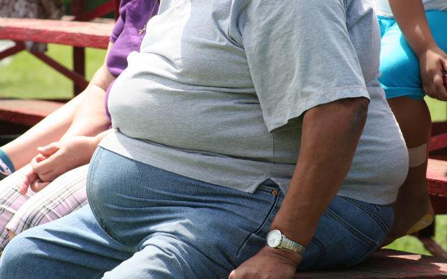 001_41_obesity-epidemic