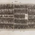 В ряде чартерных школ, в США, преподают, что рабство - это в сущности не так уж и плохо, в определенной степени это даже хорошо. По крайней мере - это приемлемо. Так, одна из них, Heritage Academy, использует в учебном процессе книги одного анти-коммунистического...