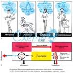 Мифы и холивары как продукт многократной реконсолидации мемграмм