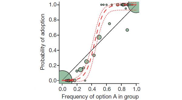 Рис.5. Зависимость вероятности того, что птица обучится поведению А (открыванию дверцы слева направо), от частоты такого поведения в группе. Величина кружков отражает количество особей. Прямая наклонная линия показывает, как выглядел бы этот график, если бы птицы заимствовали навык друг у друга без оглядки на «мнение большинства». То, что график имеет ярко выраженную сигмоидальную форму, свидетельствует о «конформистском перекосе» в передаче знаний. Рисунок из обсуждаемой статьи в Nature