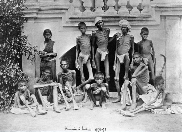 Жертвы второго большого голода в Индии (1876-1878 гг.)
