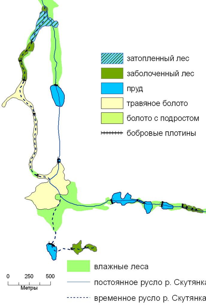 развитие экосистем речных долин после преобразования бобрами. 2004 г.