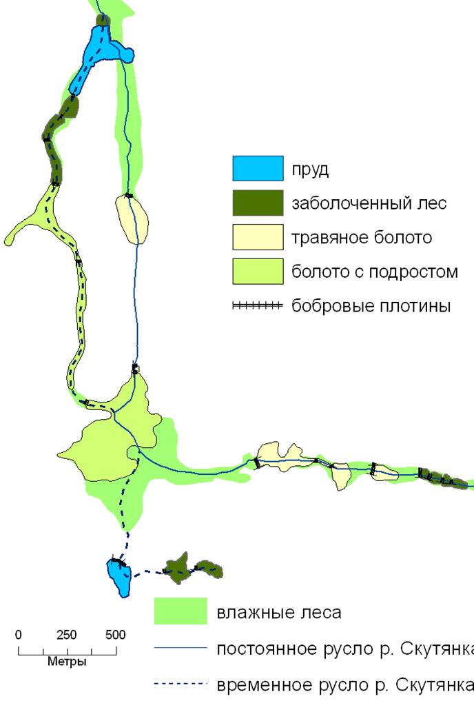 развитие экосистем речных долин после преобразования бобрами. 2008 г.
