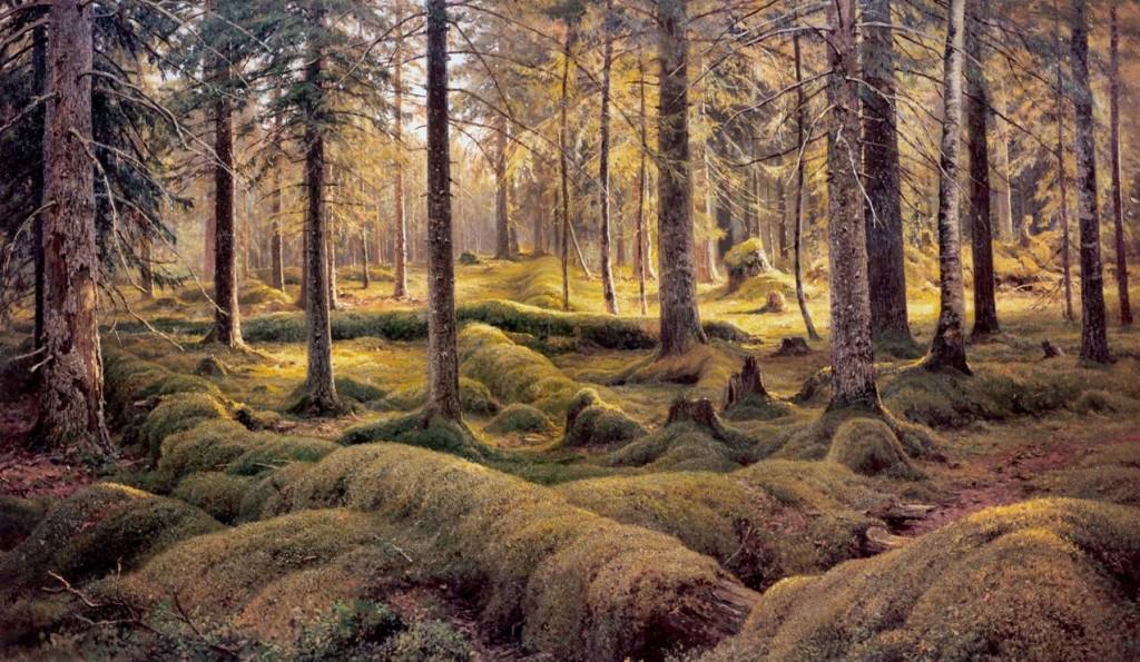 Ельник-зеленомошник, сформировавшийся на заброшенной пашне (И.Шишкин)