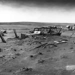 Экологический кризис: варианты и возможности выхода
