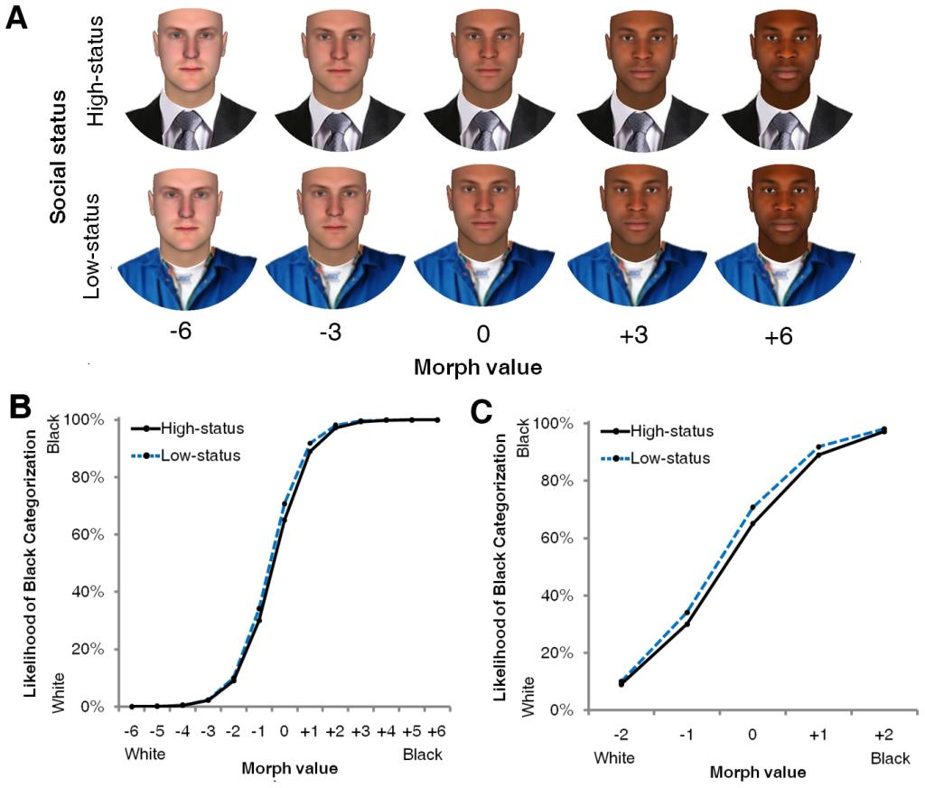 Влияние признаков статуса на определение расы