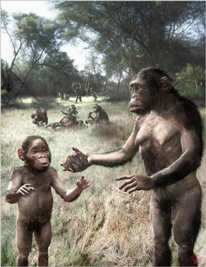 hand_use_australopithecus_1_300