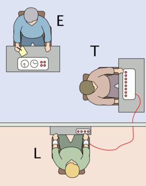 300px-Milgram_Experiment_v2