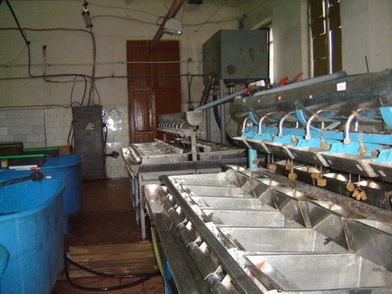 Рыборазводный завод сегодня