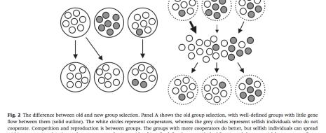 Идея группового отбора – лишняя сущность при объяснении как происхождения групповых адаптаций, так и их сохранения в череде поколений. Для первого оказывается достаточно индивидуального отбора, как только мы вводим в рассмотрение связанность индивидов отношениями, координирующих активность ранее...