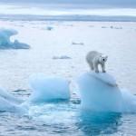 Спутники регистрируют быстрый подъём среднего уровня океана в последние месяцы