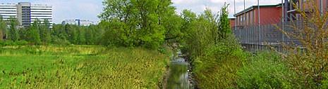 В статье представлен обзор проектов ревитализации малых рек в Европе. Названы программы, которые имели целью воссоздание природных территорий, их восстановление до...