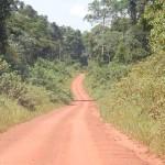 Глобальная стратегия дорожного строительства