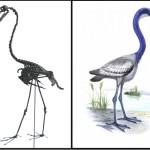 Устойчивые морфологические типы в эволюции птиц