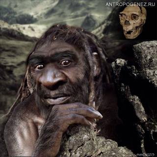 Homo heidelbergensis. (Sima de los Huesos Cranium 5). Реконструкция выполнена Олегом Осиповым в соавторстве со Светланой Шнейтор