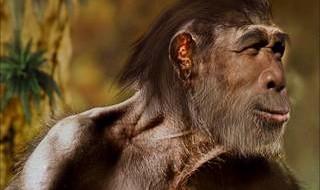 В статье суммируются данные, проливающие свет на время возникновения звучащей речи. Рассматриваются анатомические черты, с которыми различные исследователи связывали переход гоминид к членораздельной звучащей речи (опущенная гортань, величина...