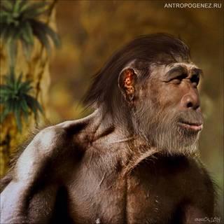 Homo heidelbergensis. (Араго XXI). Реконструкция выполнена Олегом Осиповым