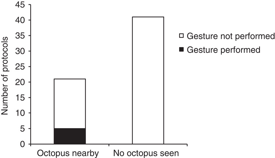 См. рис.2. Вероятность появления «стоек» коралолового групера в присутствие и отсутствие осьминогов поблизости