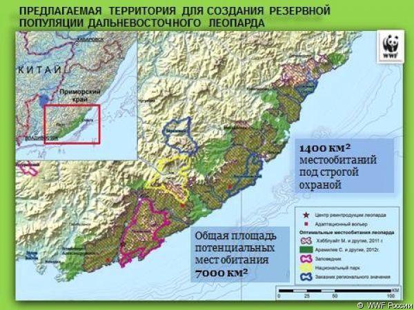 prelpolagaemaya-territoriya-dyal-sozdaniya-rezervnoi-populyatsii-dalnevostochnogo-leoparda.big