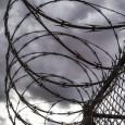 Последний доклад организации The Sentencing Project, расположенной в городе Вашингтон, приходит к выводу, что массовая приватизация тюрем в США стала примером, а не отрезвила многие другие страны (например, Англию, Канаду, Австралию и Бразилию), отдавшие свои...