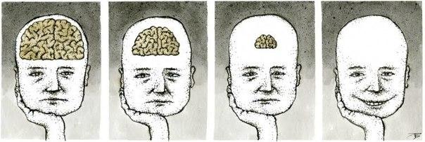mnogo-mozga