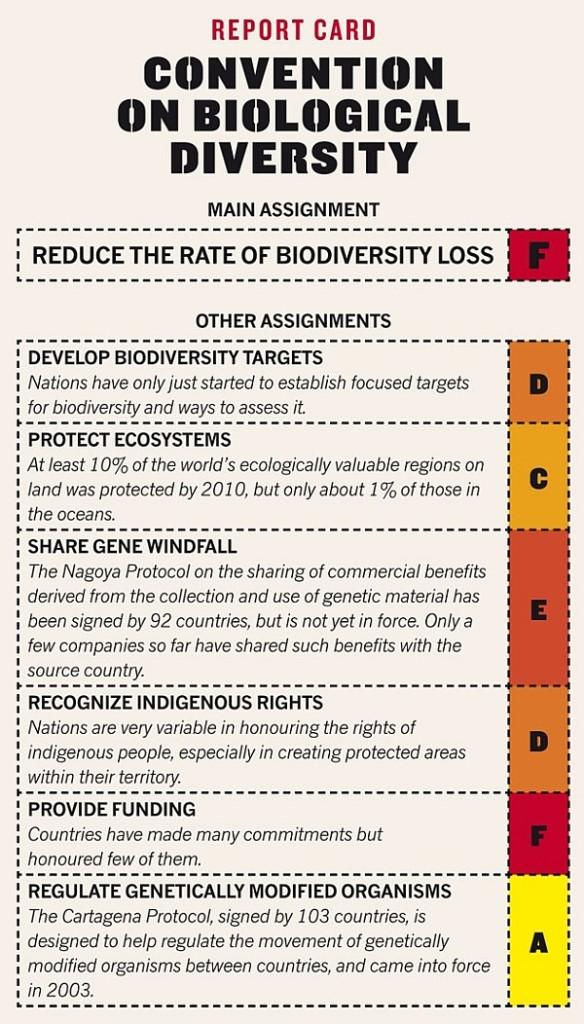 По Конвенции о биологическом разнообразии политики получили от журнала Nature более низкие оценки.
