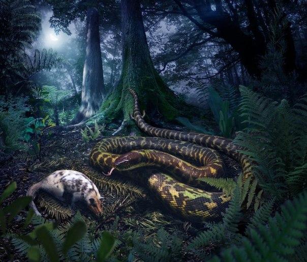 Гипотетический предок современных змей. Иллюстрация: Julius Csotonyi