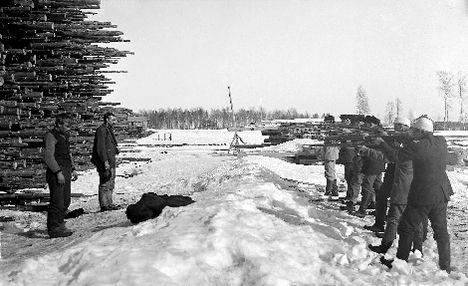 Расстрел пленных красногвардейцев в Варкаусе