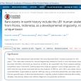 4 августа очень уважаемый журнал Proceedings of the National Academy of Sciences (PNAS) опубликовал две статьи (одна и другая). Каждая подписана четырьмя именами, из коих три – одни и те же в обеих статьях. Самое известное и «говорящее» из них – маститый южноафриканский антрополог Мацей Хенненберг. Обе статьи посвящены одной теме: пресловутые флоресские «хоббиты» (Homo floresiensis, карликовый островной вид людей, обитавший на индонезийском острове Флорес в совсем недавние времена) – вовсе никакой не вид и не одно из крупнейших открытий палеоантропологии XXI века, а ошибка исследователей, принявших за новый вид останки современного человека, страдавшего какой-то патологией развития.  Собственно, ничего особо нового в этом нет: эту песню Хенненберг и его постепенно редеющие единомышленники поют все те десять лет, что человечество знает о «хоббитах». В статьях отсутствуют результаты каких-либо новых исследований флоресских находок или иных материалов – кроме разве что перерасчета объема мозга «хоббита», сделанного на основании «измерения окружности черепа» и давшего цифру 430 куб. см. Что ж, авторов можно поздравить с отличным глазомером – в прошлом году японцы, пользуясь самыми современными методами виртуальной реконструкции, определили его в 426 куб. см., всего на 4 кубика точнее, чем Хенненберг намерил рулеткой! Новым словом можно считать разве что предположительный диагноз: если раньше анатомические особенности «хоббитов» объявлялись следствием микроцефалии, затем гипотиреоидного кретинизма и наконец – синдрома Ларона, то теперь Хенненберг и компания видит в них признаки синдрома Дауна. Что, однако, нисколько не смущает уважаемых ученых: по их мнению, «бремя доказывания должно лежать на сторонниках более экстравагантной гипотезы» (вот она, реплика из детектива!) – каковой они, естественно, считают версию отдельного вида людей. В переводе на нормальный человеческий язык это пафосное утверждение означает: у нашей точки зрения доказательств нет и не предвидится, так 