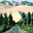 Для борьбы с опустыниванием и наступлением Сахары, на самом высоком, ООНвском уровне было принято решение взяться по-серьёзному за «строительство...