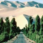 Не прошло и ста лет — борьба с наступлением Сахары