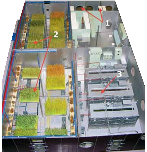 Макет БИОС-3: 1 – жилая часть: три кабины для экипажа, санитарно-гигиенический модуль, кухня-столовая; 2 – фитотроны с высшими растениями: два с площадями посева 20 м2 в каждом; 3 – водорослевый культиватор: три фотобиореактора объемом 20 л каждый для выращивания Chlorella vulgaris.