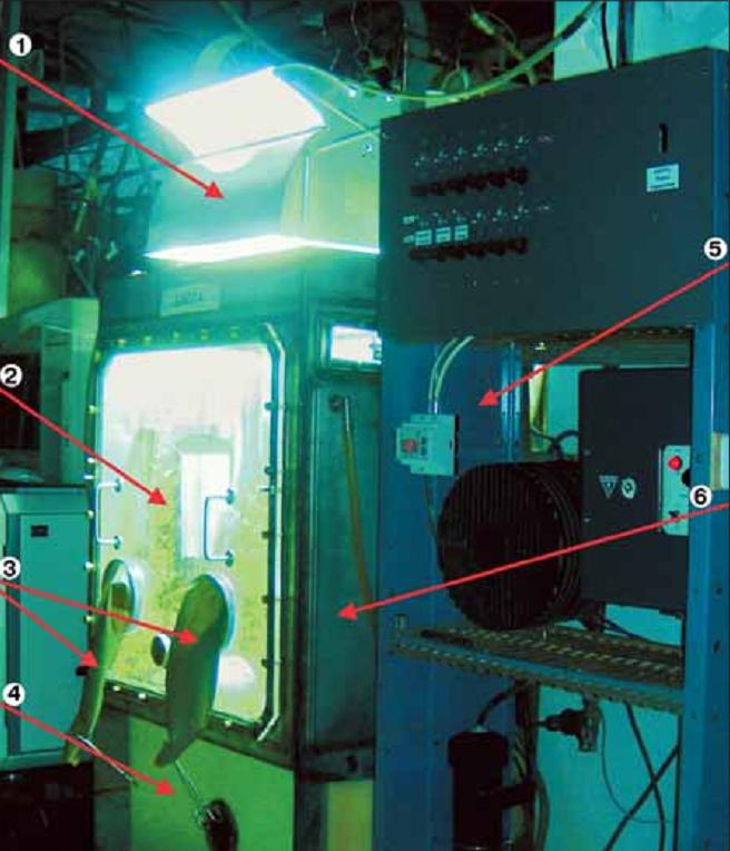 Внешний вид малой искусственной экосистемы: 1 – облучатель с высокоинтенсивным источником света; 2 – фототрофное звено (высшие растения) внутри герметичной камеры; 3 – манипуляторы для работы внутри камеры без нарушения ее герметичности; 4 – почвенный блок с почвоподобным субстратом; 5 – приборная стойка для контроля и автоматического поддержания параметров среды внутри камеры; 6 – стенка герметичной камеры из нержавеющей стали.