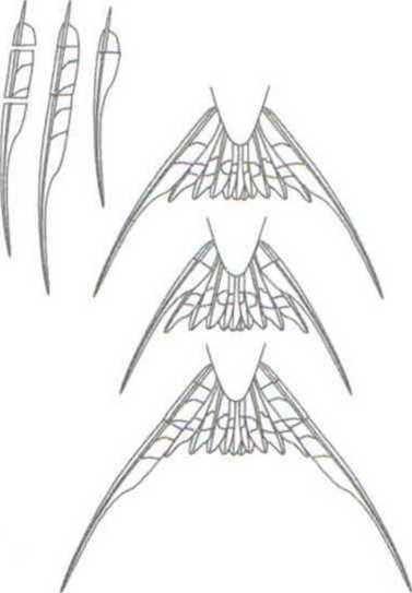 Рис. 2.5. Схема манипуляций с крайними рулевыми хвоста деревенской ласточки (обрезание и приклеивание обрезанных фрагментов). Из: Evans, Thomas, 1997.