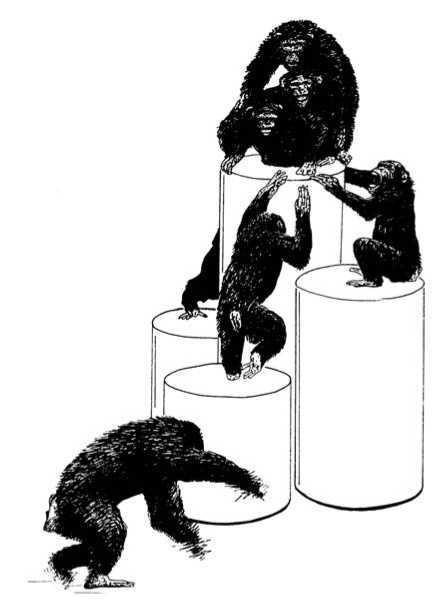 Три больших самца в страхе прижимаются друг к другу на самом высоком барабане, в то время как самки агрессивно толпятся вокруг них, дергая их за ноги и волосы. Одна из самок демонстрирует себя на переднем плане
